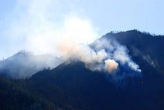 Bosbrand in de bergen Royalty-vrije Stock Foto's