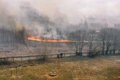 Bosbrand dichtbij woningbouw De mensen zijn van brand in gevaar Brandstichtings droog gras Vlam en rook royalty-vrije stock foto