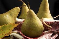 Bosc-Birnen themenorientiert für Herbst Stockbilder