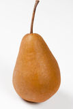 Bosc Pear. Single Bosc Pear with white background Stock Image
