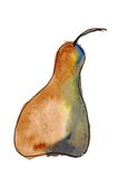 Bosc Pear Painting Royalty Free Stock Photography
