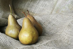 Bosc Pears on Burlap Stock Images