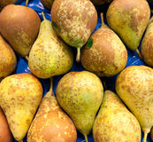 Bosc Pears in the market Royalty Free Stock Photography