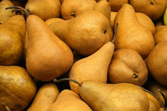 Bosc Pears Royalty Free Stock Image