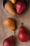Bosc and Red Pears Royalty Free Stock Photography