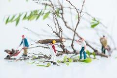 Boscaioli miniatura che lavorano in gruppo negli alberi di abbattimento e di taglio vicino su Fotografia Stock