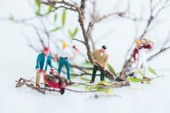 Boscaioli miniatura che lavorano insieme negli alberi di abbattimento e di taglio vicino su Fotografie Stock