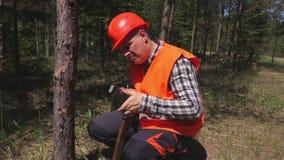 Boscaiolo che affila ascia in foresta