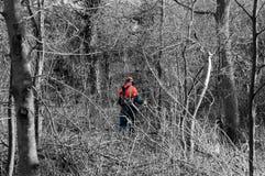 Boscaiolo nella foresta immagini stock libere da diritti