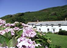 Boscastle: Cottage e giardini Fotografie Stock Libere da Diritti