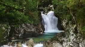 Boschetto dell'acqua di Sunik, alpi di Julian, Slovenia Immagine Stock