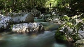 Boschetto dell'acqua di Sunik, alpi di Julian, Slovenia Fotografie Stock Libere da Diritti