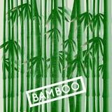 Boschetto di bambù Illustrazione di Stock