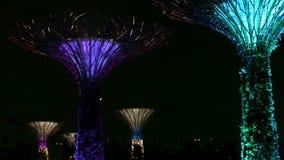 Boschetto di Supertree ai giardini dalla baia alla notte Dimostrazione dello spettacolo di luci archivi video