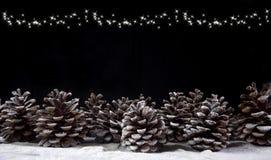 Bosco di pigne lurar neve Royaltyfri Fotografi