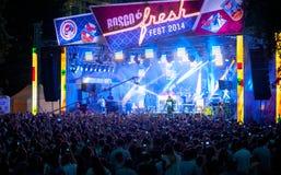 Bosco Fresh Festival Fotos de archivo libres de regalías