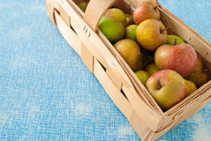 Boscop apples Royalty Free Stock Photography
