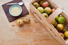Boscop apples Royalty Free Stock Images