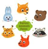 Bosdierenvector Dieren van de bosdieren in het bos op een witte achtergrond Snuiten van dieren Stock Afbeeldingen