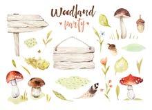 Boselementen witn paddestoelen, takken, grassl voor kleuterschool, geïsoleerde illustratie voor kinderen, patroon vector illustratie