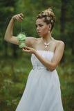 Bosfee mooi meisje in wit Stock Foto's