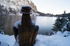 Bosgeest; Tatransky narodny park Tatry Vysoke slowakije stock afbeeldingen
