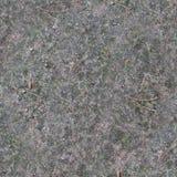Bosgrondtextuur met mos Achtergrond stock foto's