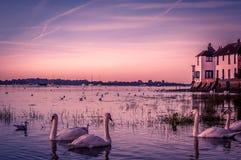 Bosham Hafen stockfotos