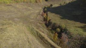 Bosheuvel op de rivierbank stock footage