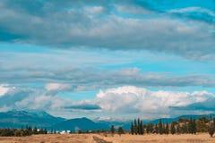 Boshorizonhemel Een dunne strook van bos op de hemelachtergrond Royalty-vrije Stock Afbeeldingen