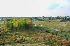 Bosje op de bank van de Konka-Rivier Royalty-vrije Stock Fotografie