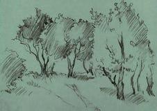 Bosje van loofbomen royalty-vrije illustratie