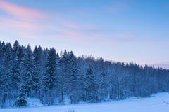 Boslandschap en onduidelijk beeldwolken in zonsonderganghemel bij Se van de sneeuwwinter Royalty-vrije Stock Fotografie