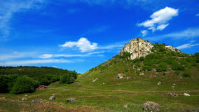 Boslandschap met rots royalty-vrije stock fotografie