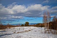 Boslandschap, mooie wolken op de vooravond van de lente, zonnige dag stock foto's