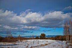Boslandschap, mooie wolken op de vooravond van de lente, zonnige dag stock afbeelding