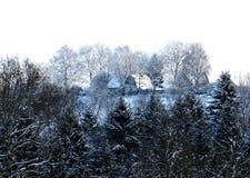 Boslandschap van de sneeuw het koude winter Royalty-vrije Stock Afbeeldingen
