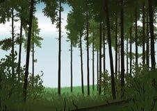 Boslandschapsillustratie Stock Foto's