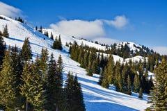 bosnia centrum hercegovina jahorina narta zdjęcie royalty free