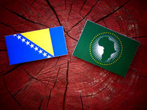 Bosnia and Herzegovina flag with African Union flag on a tree st Stock Photo