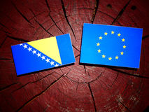 Bosnia and Herzegovina flag with EU flag on a tree stump isolate. D Royalty Free Stock Photos