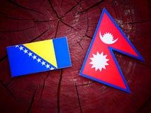 Bosnia and Herzegovina flag with Nepali flag on a tree stump iso Stock Image