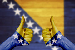 Bosnia and Herzegovina flag painted on female hands thumbs up Stock Images