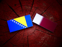 Bosnia and Herzegovina flag with Qatari flag on a tree stump isolated. Bosnia and Herzegovina flag with Qatari flag on a tree stump Stock Photo