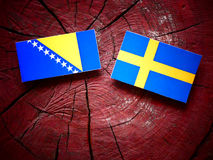 Bosnia and Herzegovina flag with Swedish flag on a tree stump is Royalty Free Stock Photography