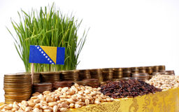 Bosnia and Herzegovina flag waving with stack of money coins and seeds Stock Image