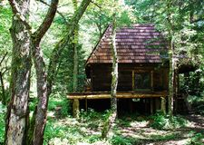 Bosnian Forest Hut. An isolated wooden hut located deep in the Bosnian forest Stock Image