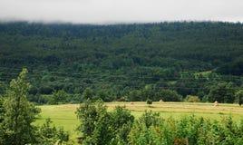 Bosnian Landscape Royalty Free Stock Photo