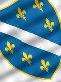 Bosnienflagga Royaltyfria Bilder
