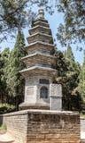 Bospagoden Talin in het Shaolin-Klooster Royalty-vrije Stock Fotografie